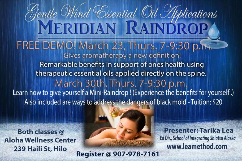 Meridian Raindrop